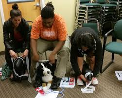 classes for pet owners at westvet american red cross dog first aid