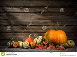 images for thanksgiving free thanksgiving stock photo image 45272311
