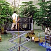 turn key artificial plant and tree services commercial silk int l