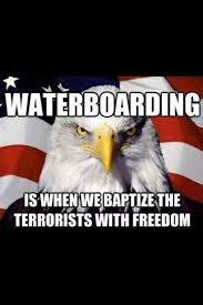 Freedom Eagle Meme - freedom bald eagle meme mne vse pohuj