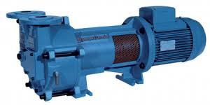 Water Ring Vaccum Pump Industries That Use A Water Ring Vacuum Pump