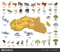 3d africa map vector flat 3d isometric africa flora and fauna map constructor element