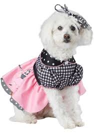 50s Halloween Costumes Poodle Skirts Poodle Skirt Dog Costume