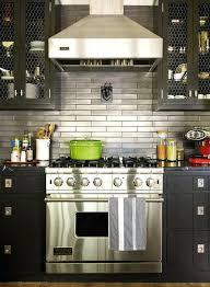 Chicken Wire Cabinet Doors Chicken Wire Kitchen Cabinet Doors Diy Cabinets Black Stainless