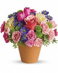 flower delivery st louis st louis florist flower delivery by designing flowers florist