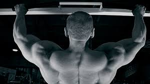 How Much Does A Bench Bar Weigh 6 Coaches Weigh In On Pull Ups T Nation