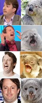 Cumberbatch Otter Meme - benedict cumberbatch looks like an otter and david mitchell is a