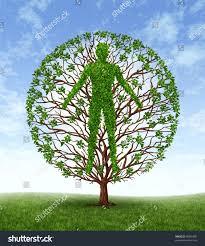 human growth development personality development stock