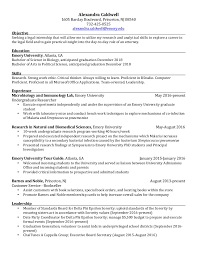 Princeton Resume Template Free Essays On Child Nutrition Martha Shehan Homework Printables