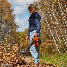 your guide to the absolute best gas powered leaf blowers family