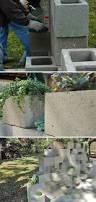 429 best plant it garden ideas images on pinterest cinder