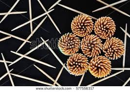 toothpicks plastic stock images royalty free images vectors