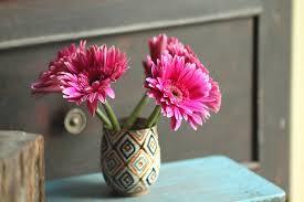 Decoration Vase Free Photo Flower Floral Pink Decor Vase Decoration Max Pixel