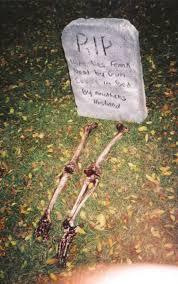 spooky cornfield gallery