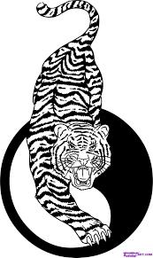 fierce tiger yin yang tiger tiger