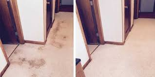 Upholstery Sioux Falls Sd Residential Carpet Cleaning Deep Clean Carpet U0026 Upholstery Cleaning