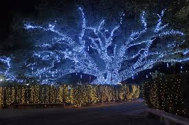 Spirit Of The Suwannee Christmas Lights Holiday Time Southern Hospitality Magazine U2013 Traveler