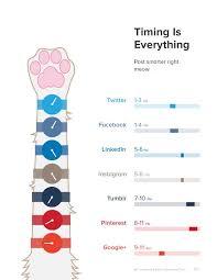 Plan Social Media Best 25 Social Media Networks Ideas On Pinterest Social Media