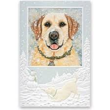 pumpernickel christmas cards yellow lab dog boxed christmas cards pumpernickel