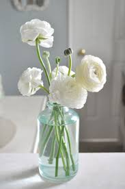 White Flowers Pictures - best 25 ranunculus ideas on pinterest ranunculus flower