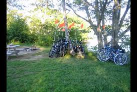 Cape Cod Kids Fishing - cape cod with kids 25 things to do with kids in wellfleet ma