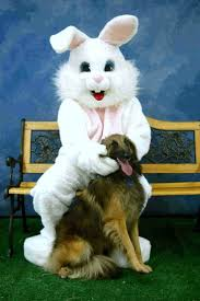 44 best creepy easter bunny images on pinterest bunnies happy