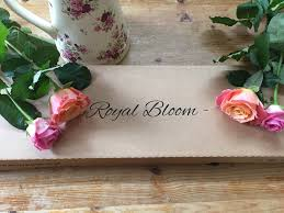 flower subscription monthly flower subscription royal bloom