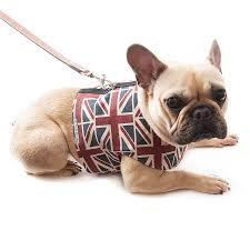 union jack linen dog harness by mutts u0026 hounds