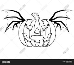 halloween pumpkin with bat wings stock photo u0026 stock images