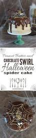 chocolate halloween cakes best 10 spider cake ideas on pinterest halloween cakes