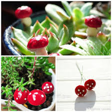 online cheap diy tiny mushrooms garden terrarium home decor crafts
