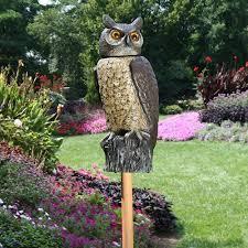 rotating owl scarecrow device walmart