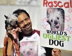 Ugliest World U0027s Ugliest Dog Is Really World U0027s Cutest Emirates 24 7