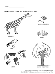 animal matching workseets for preschool crafts and worksheets