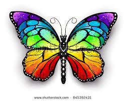butterfly stock images royalty free images vectors