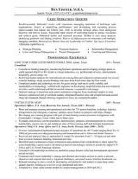 Cfo Resume Template Cheap Research Proposal Ghostwriting Site For Phd Cheap Rhetorical