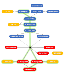 the chip analysis methylation pipeline