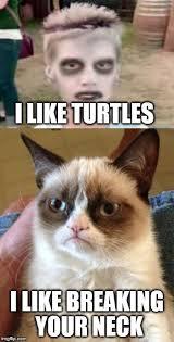 I Like Turtles Meme - grumpy cat again imgflip