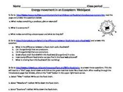 energy movement in an ecosystem webquest by bmw2182 teaching
