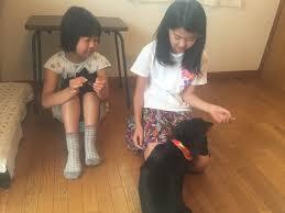 メゾピアノ 女子小学生 ヌード http://i.imgur.com/0CWDtnm.jpg