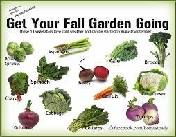 Fall Vegetable Garden Ideas 46 Best Garden Checklist September Images On Pinterest Gardening
