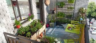 Small Urban Garden - how to create a small urban garden