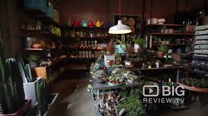 sprout home a garden store in new york offering garden plants and