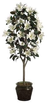 silk plants direct magnolia tree pack of 1 traditional