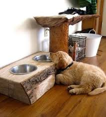 Window Seats For Dogs - 31 insanely clever remodeling ideas for your new home doggies
