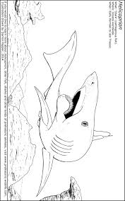 helicoprion colouring sheet jpg