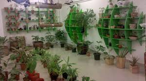 indoor plant shop in dubai yellow pages directory with contact details