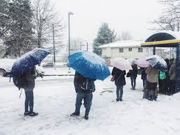 opinion hey vancouver umbrellas aren u0027t for snow daily hive