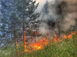 Wild Fire Update Montana by Updates News Releases U2013 Minnesota Incident Command System