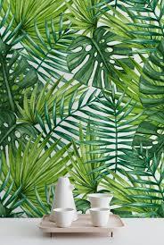 best 25 palm wallpaper ideas on pinterest tropical entry